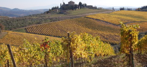 Chianti in the fall
